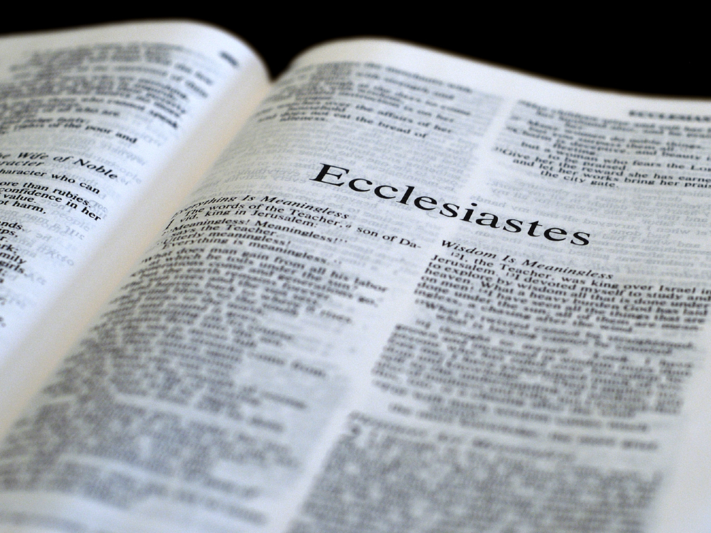 book of ecclesiastes analysis Vanity of vanities all is vanity so begins the book of ecclesiastes, one of the more difficult books of scripture to interpret and apply the book deals with.
