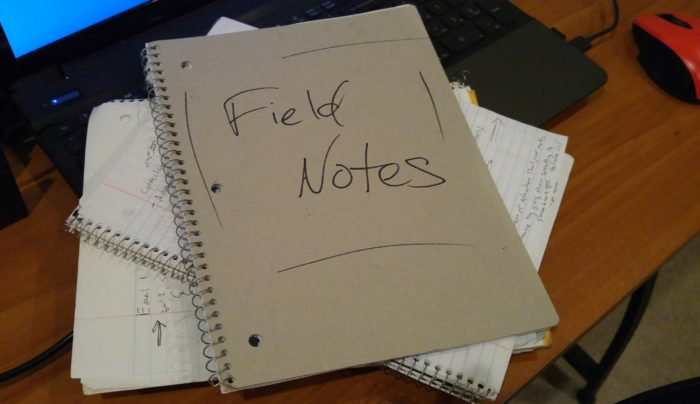 Field Notes from My $6 Million Year
